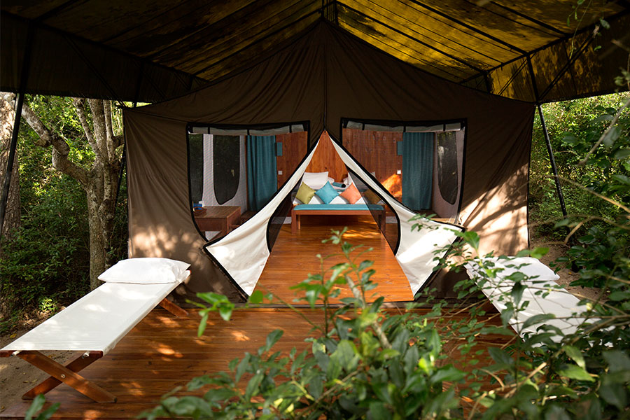 Wild Trails Tents